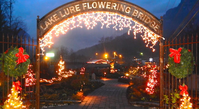 Flowering Bridge Christmas Lights