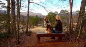 Dittmer Watts Nature Trail Park: Best DogTrails in Lake Lure