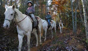 Cedar Creek Riding Stables