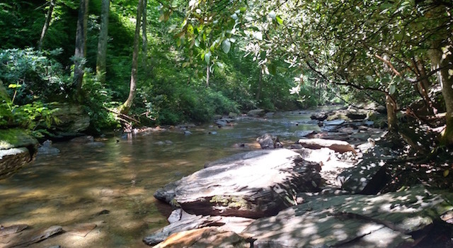 Nature in Lake Lure - Rocky Broad River